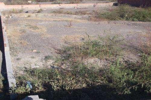 Venta hermoso terreno en huaychilla la paz zona sur