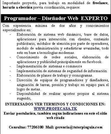 Programador - diseñador web experto