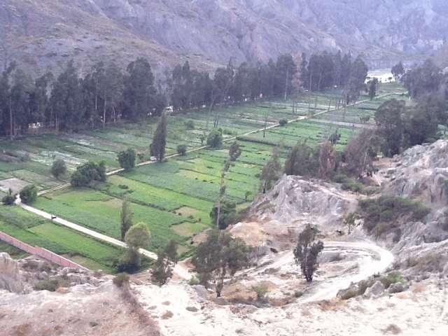 Venta terreno huajchilla 2050 mt/2 con construcciones