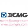 XCMG cargadores repuestos ZL30G ZL50G ZL30H LW188 LW300 LW321 LW500 LW521 WZ30-25