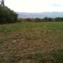 En venta de ocasion 20 hectáreas de terreno en en VINTO Cochabamba