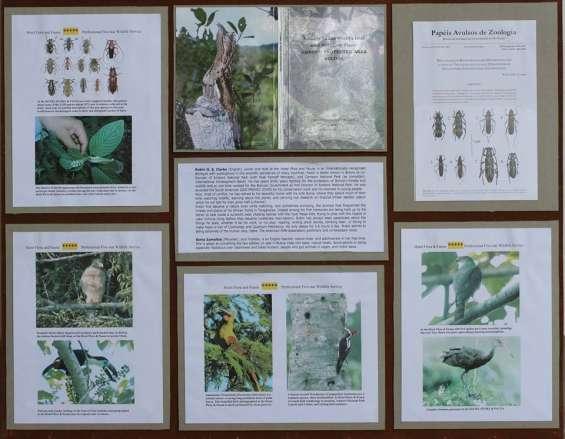 Biodiversidad dentro del albergue.