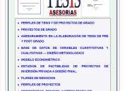 Asesoramiento en la elaboración de tesis de pre y post grado.