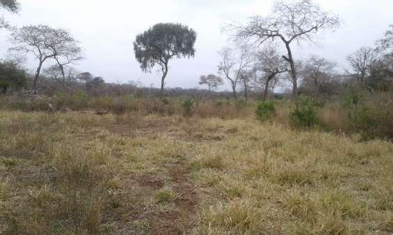Yayavendo bonita propiedad de 100 hectáreas, en el km 100